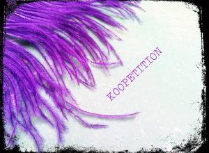 koopetition header 300x220 - Mit Koopetition zum gemeinsamen Ziel