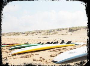 Surfen ist eine tolle Sache, sowohl im Meer als auch im Netz