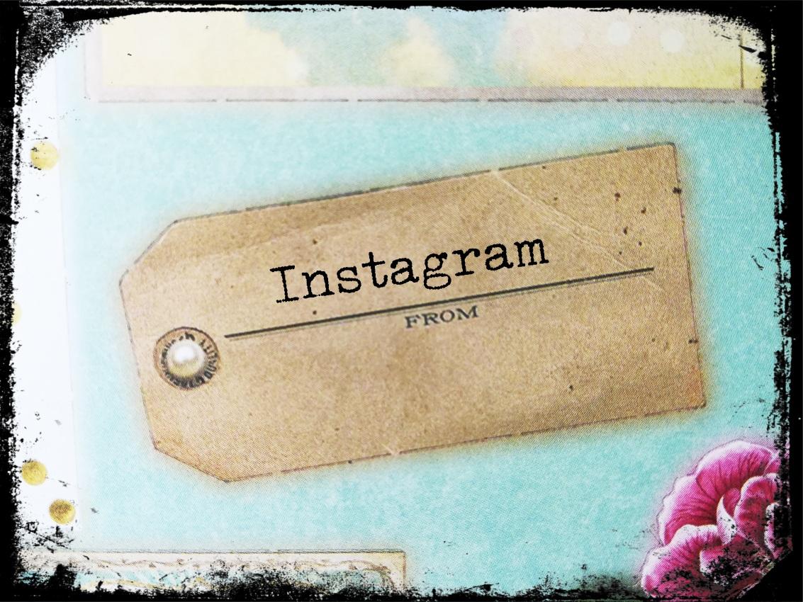 Instagram für Dein Unternehmen