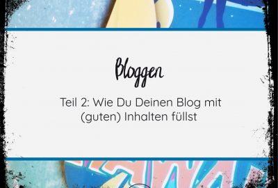 Widgets, PLugins und Bloggen einfach und verständlich erklärt