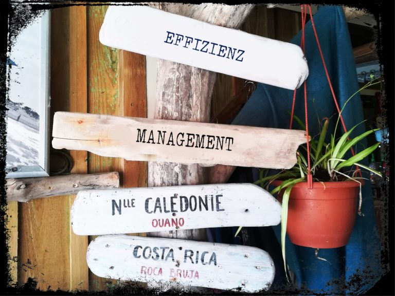 Effizienz management frame 768x576 - Business & Selbstständigkeit