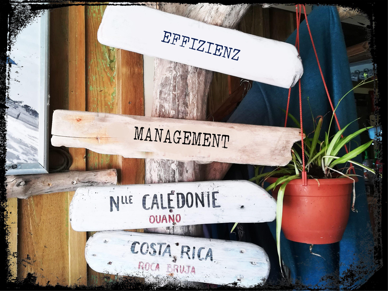 Selbstständigkeit braucht Effizienz und gutes Management